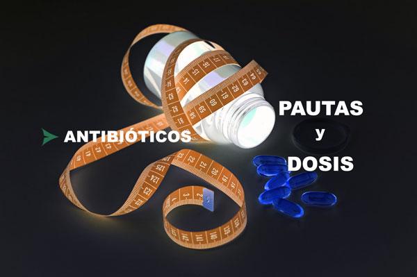 Tratamientos antibióticos pautas o dosis